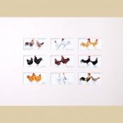 Poultry - Reproduction